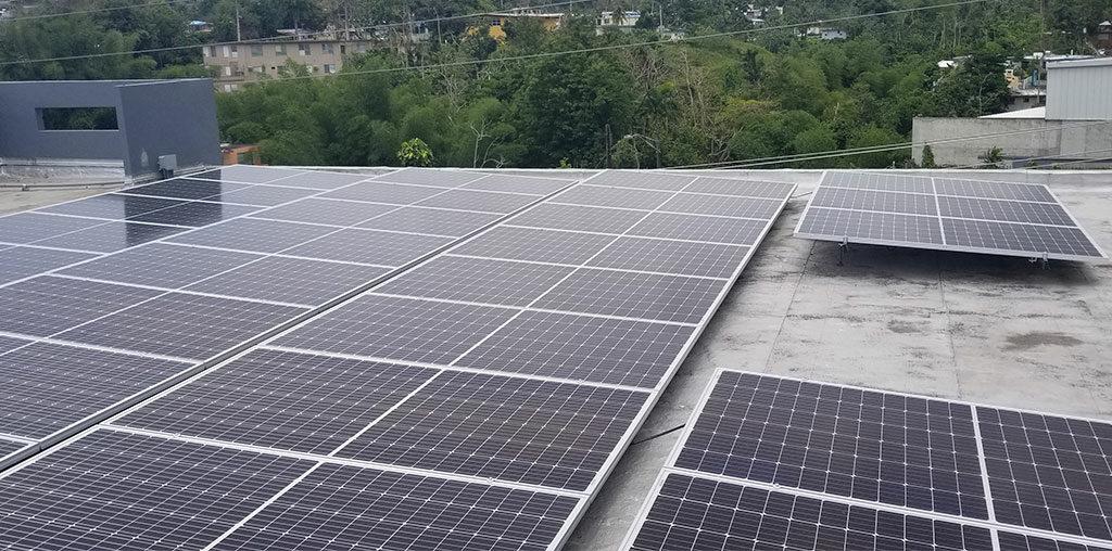 Solar Roots, Escoger, Seleccionar, paneles solares, fotovoltaico, para el hogar, casa, negocio