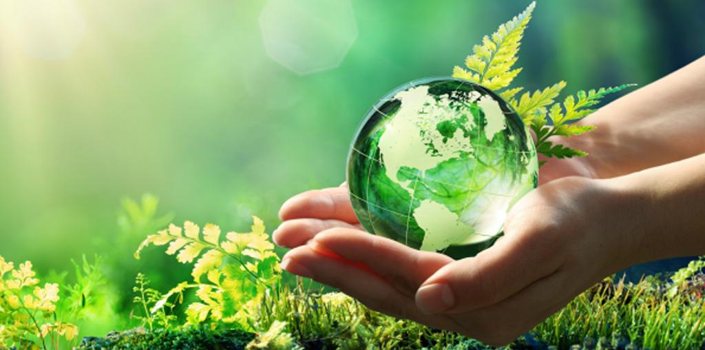 Consejos importantes para cuidar el Medio Ambiente