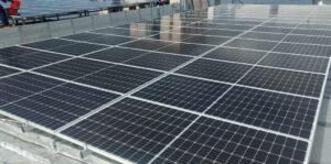 Solar Roots: Brindando la mejor energía de Puerto Rico